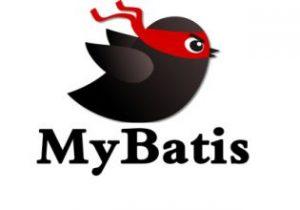 Mybatis配置的实例