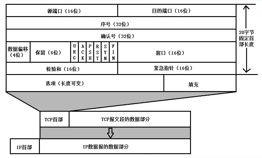 Snip20200807_65